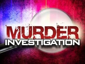 Murder-Investigation-BEST (2)