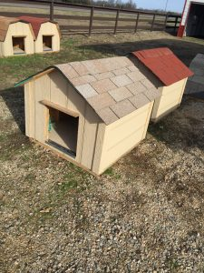 bids doghouse