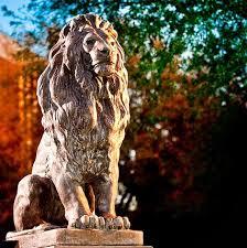 TAMUC - Lion
