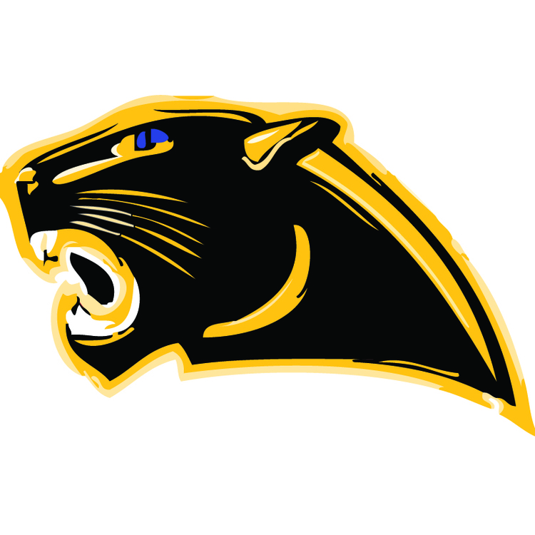 Black & Gold Panther