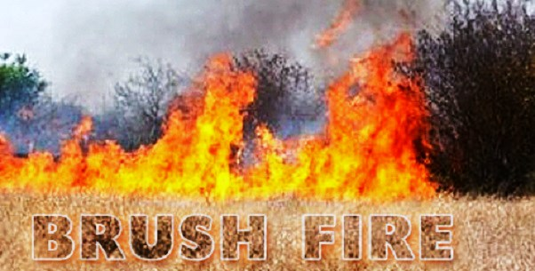 BRUSH-FIRE