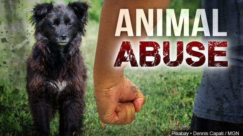 Lamar County Man Charged with Animal Cruelty