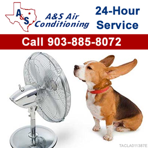 A&S Air Conditioning Top Sidebar Dog Fan