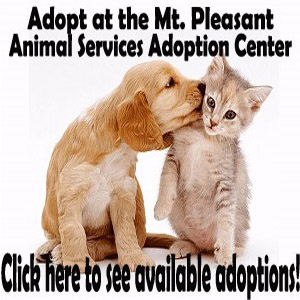 Mt. Pleasant Pet Adoption-Top Sidebar